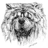 Chow Chow Personalised Greetings Card